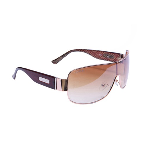 Coach Noelle Brown Sunglasses AMR