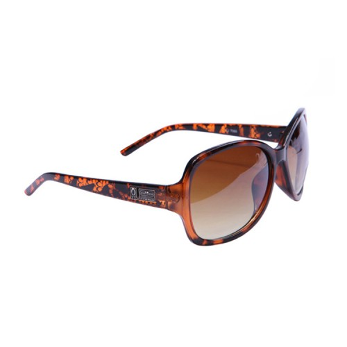 Coach Carla Brown Sunglasses CCX