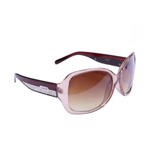 Coach Megan Brown Sunglasses CDA