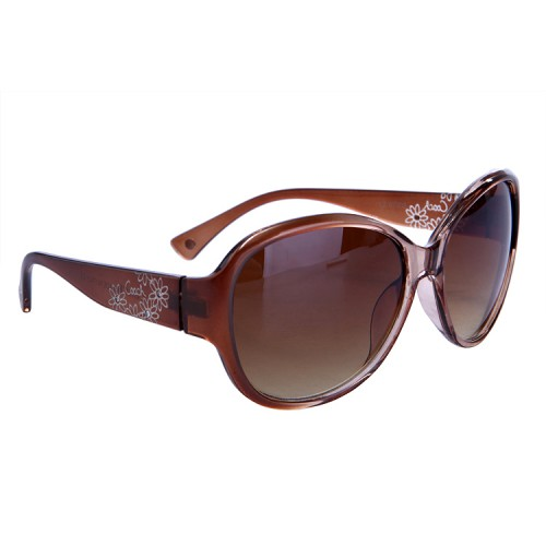 Coach Lindsay Brown Sunglasses DBW