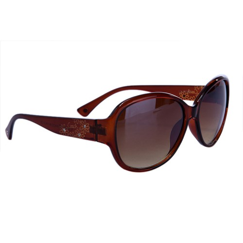 Coach Lindsay Brown Sunglasses DBX