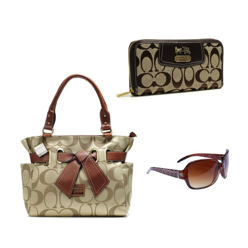 Coach Only $109 Value Spree 25 DDL