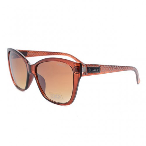 Coach Vanessa Brown Sunglasses DKZ