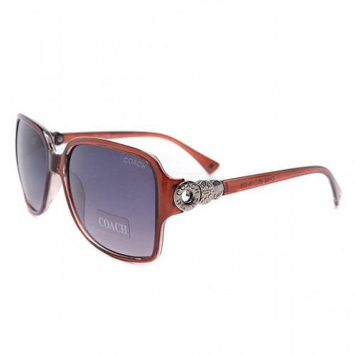 Coach Natasha Brown Sunglasses DLK