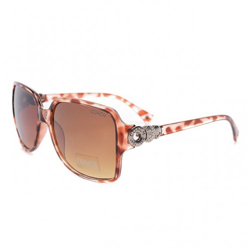 Coach Natasha Brown Sunglasses DLN