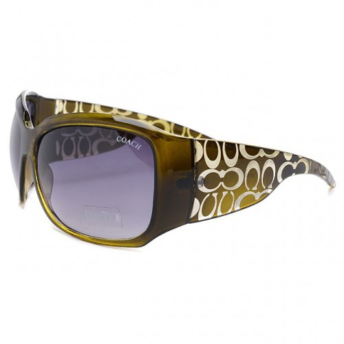 Coach Daylan Green Sunglasses DLV