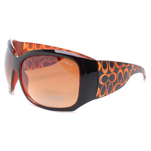 Coach Daylan Brown Sunglasses DLY